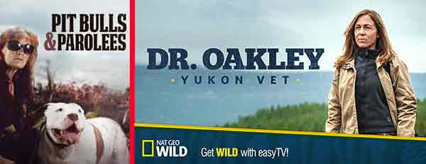 Pit Bulls and Parolees Dr. Oakley, Yukon Vet